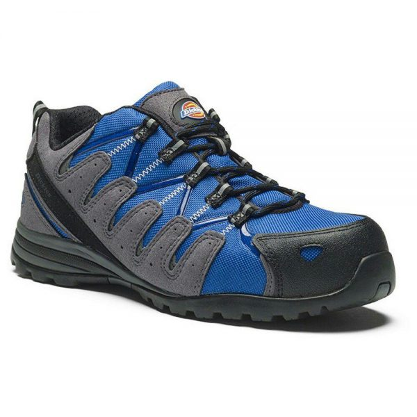 کفش ایمنی دیکیز